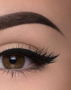 Eyebrows Design & Care